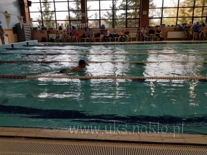 """137 Reprezentanci """"Czwórki"""" na pływackiej Licealiadzie"""