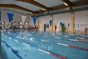5 Walczyli o tytuł szkoły Mistrzów Pływania